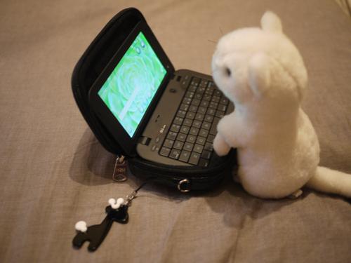 nintendo DS Liteのケースに入れてみました。